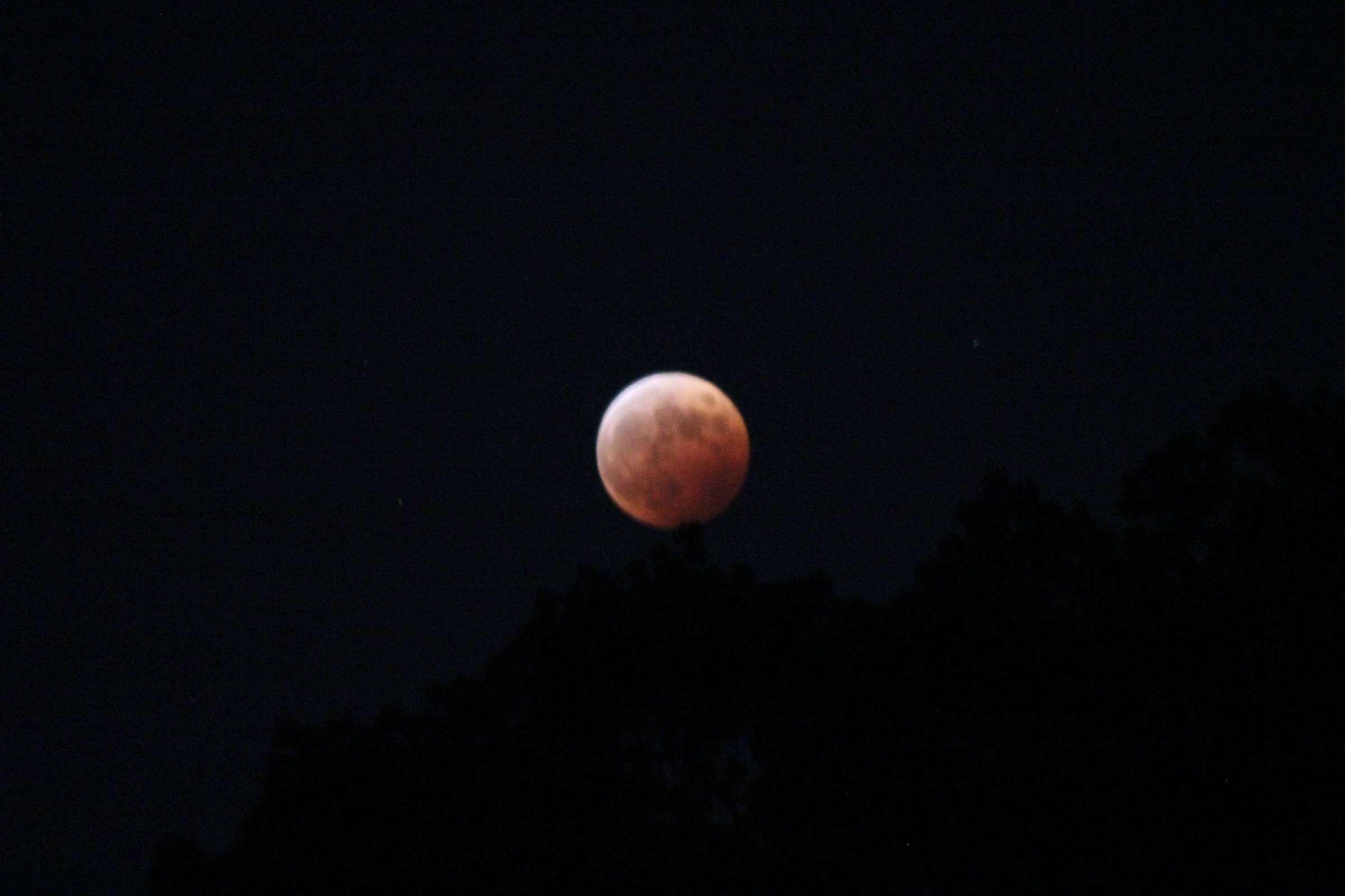 皆既月食 2014年10月8日 ②