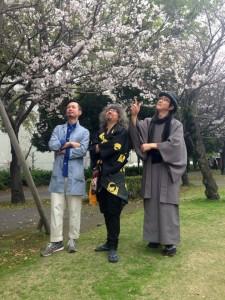 春の桜を賞でる。